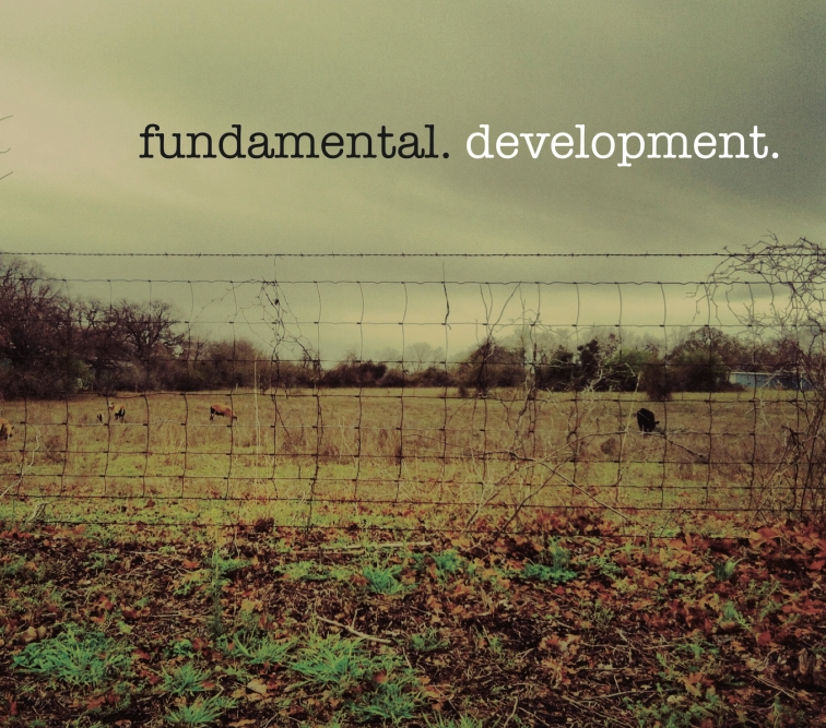 fundamental development album cover